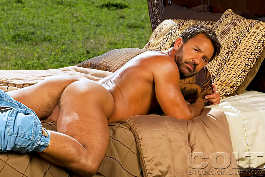 free pictures of gay porn stars
