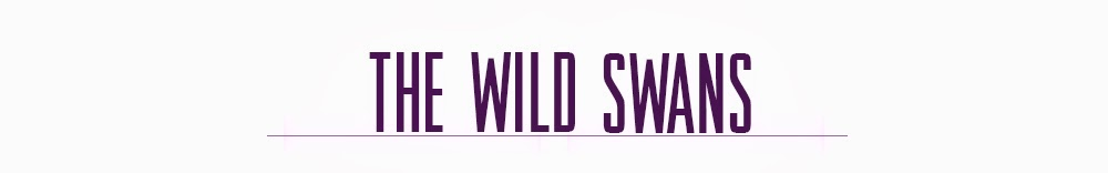 The Wild Swans / a Fashion Guide for Stylish Chaps