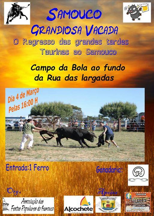 1ª Grandiosa VACADA 2017 - Org. Ass. de Festas do Samouco