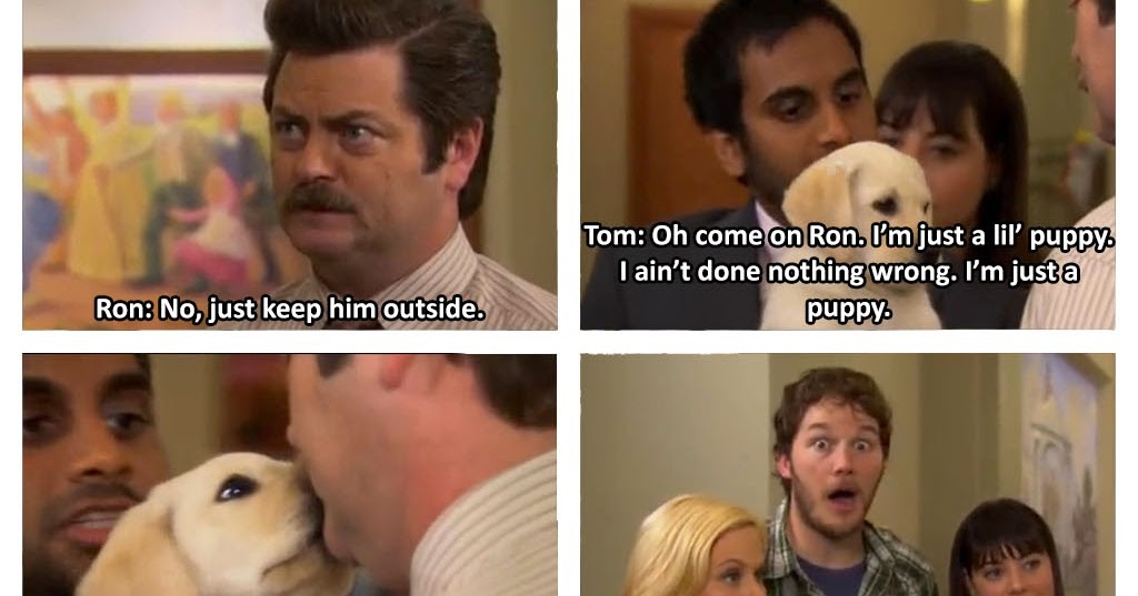Breathtaking And Inappropriate Ron Swanson Has No Time For Puppy