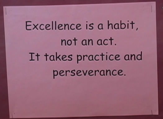 More Excellence Quotes and Sayings: