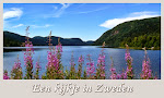 Zo ga je naar mijn andere blog 'Een kijkje in Zweden'
