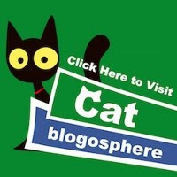CAT BLOGOSPHERE MEMBER