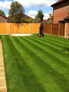 grass cutting, gardener, crawley, horsham, Sussex