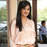 Vimala Raman Latest Photos in Jeans at Trendz Life Style Expo 2014 Inauguration 0010