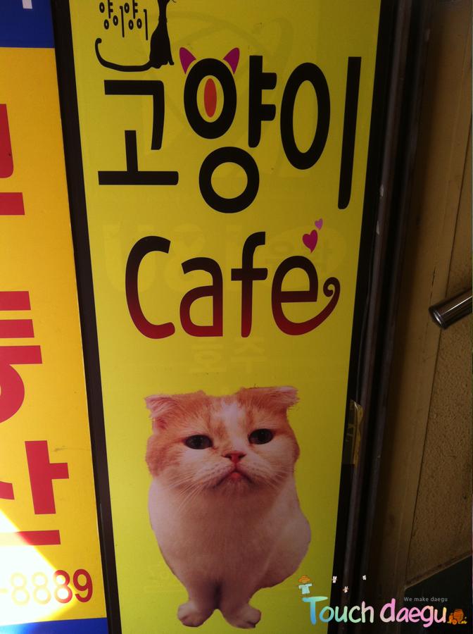 Go-Yang-E cafe in Daegu