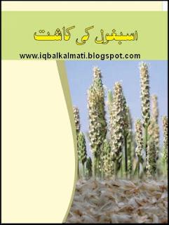 Ispaghol Ki Kasht (Cultivation) Booklet PDF Download