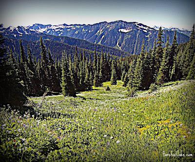 Hayden Pass Trail