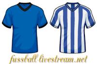 1899 Hoffenheim - Hertha BSC