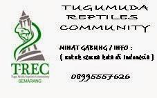 TUGUMUDA REPTILES COMMUNITY