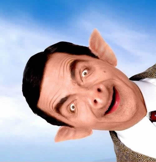 mr bean funny face-top-my-wallpapers 1