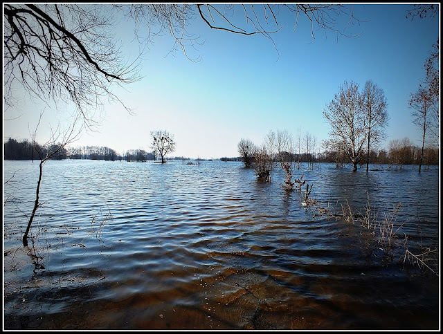 Powódź w Dołhobrodach 2013 r.