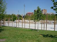 Go Tandem - Skate Park