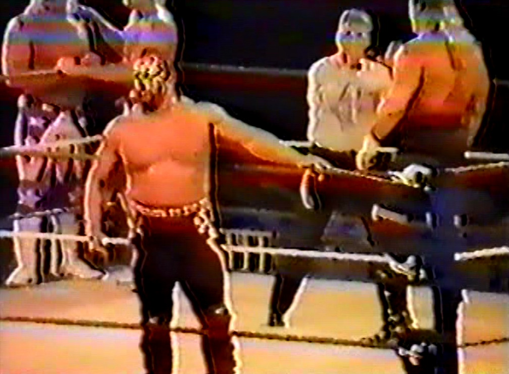 Steve's Graps: Things That Never Were: Road Warrior Animal and ...