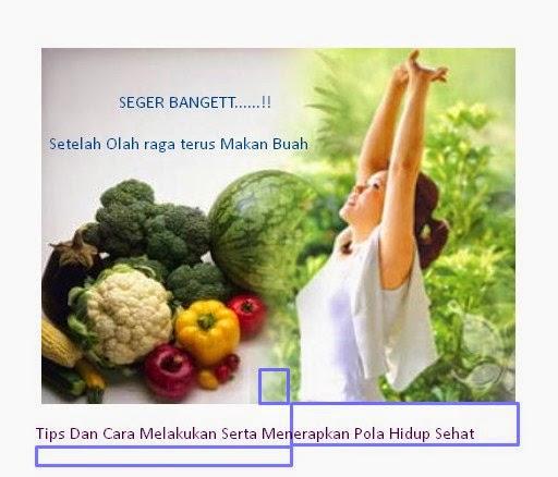 Tips Dan Cara Melakukan Serta Menerapkan Pola Hidup Sehat