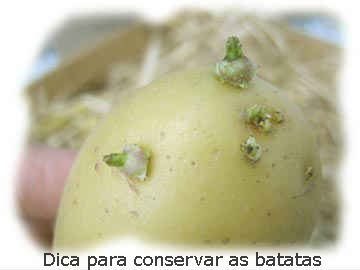 dica-cuidados-conservar-batatas