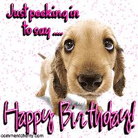Happy birthday ITSETTLE! Birthday_dog