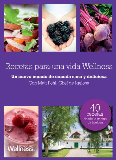 LIBRO DE RECETAS WELLNESS