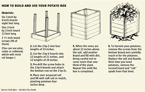 how to build a potato box