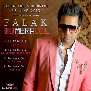 Tu Mera Dil – Falak (2013) Songs.Pk Download Pakistani Mp3 Songs