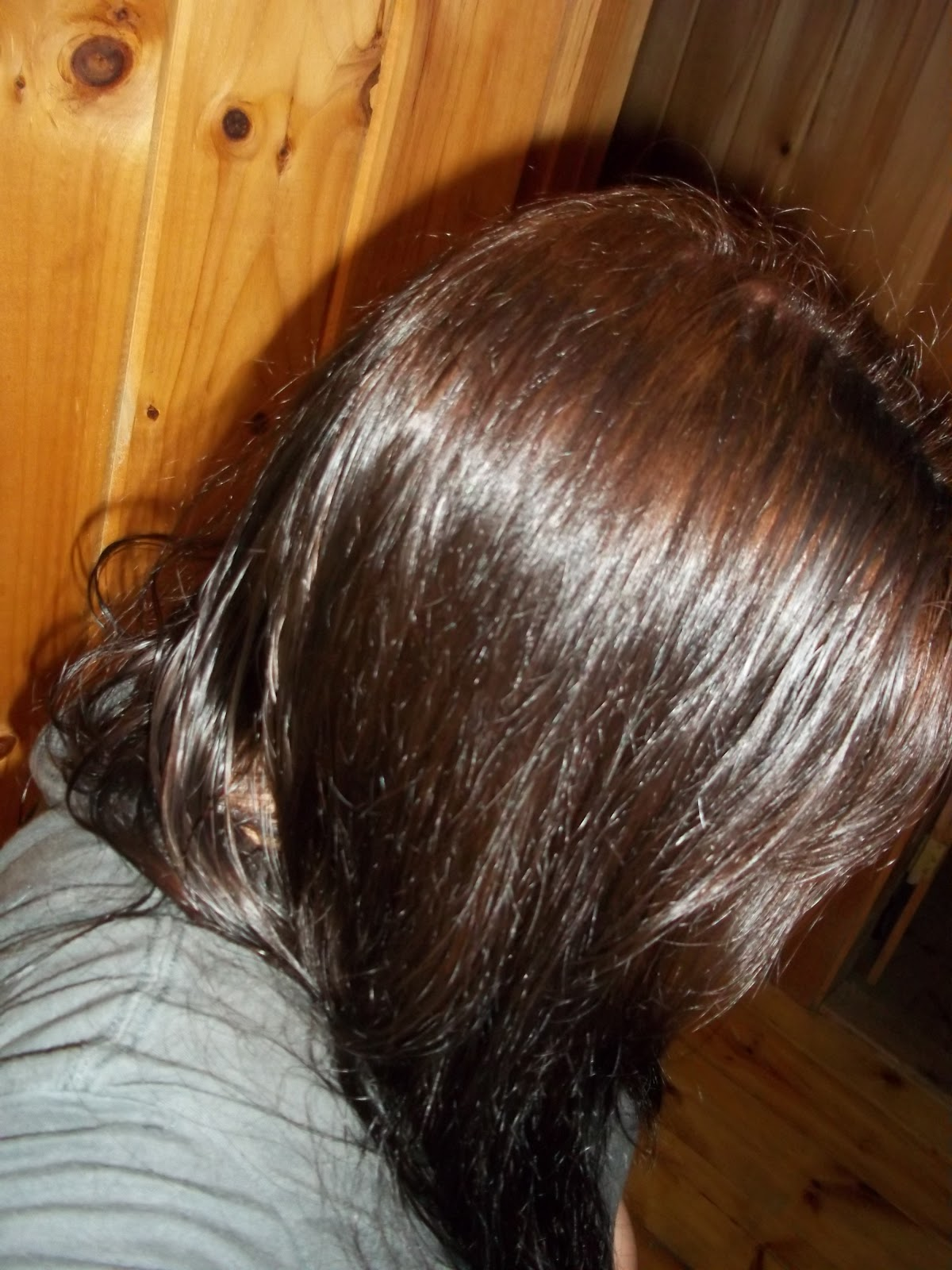 Housewifeswagger Permanent Hair Color Review Garnier Nutrisse