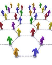 Ciri, Unsur, Teori Organisasi