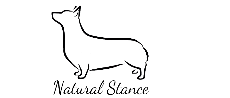 Natural Stance
