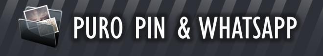 Puro Pin