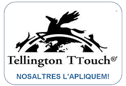 Tellington touch practioner