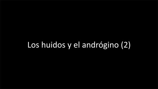 Los huidos y el andrógino (VIDEO 2)