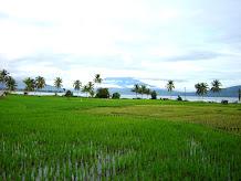 SaningBakar Dalam Foto