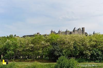 au dessus des arbres la cité de Carcassonne photo pascal blachier