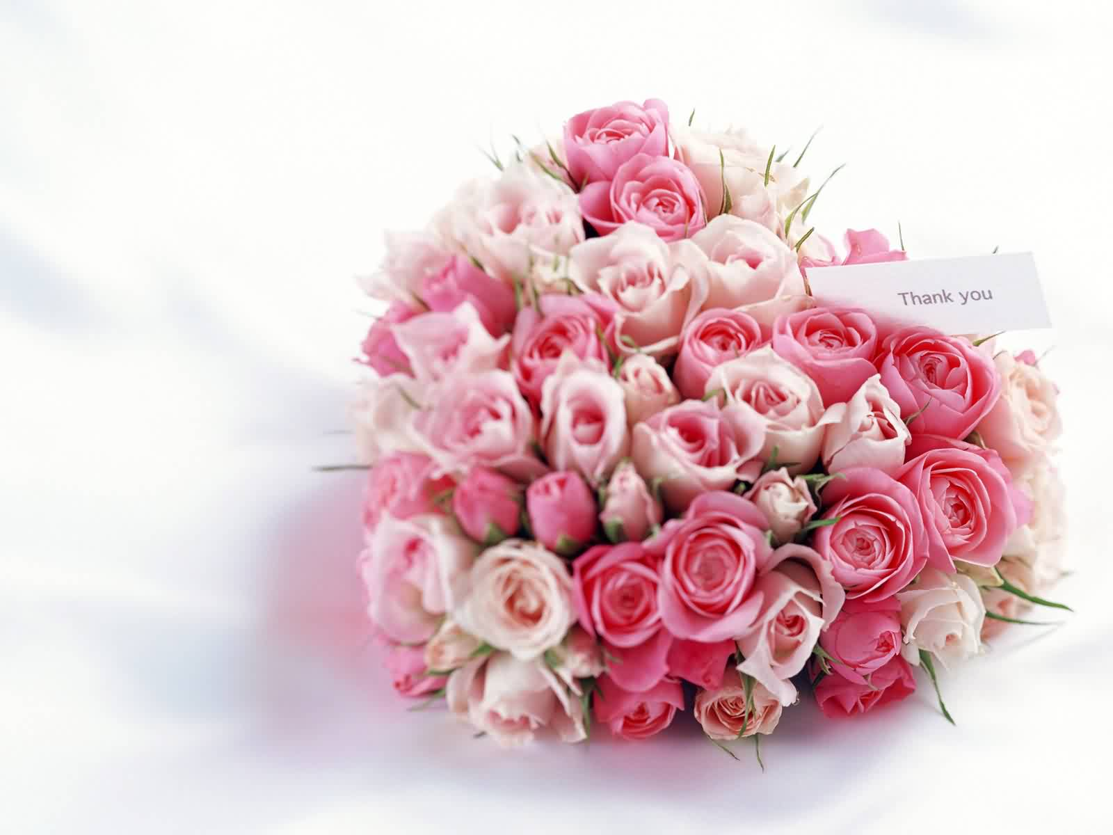 Free Download 44 Romantic Valentine Day Hq Wallpapers 2013 Free