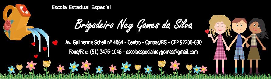 Escola Estadual Especial Brigadeiro Ney Gomes da Silva