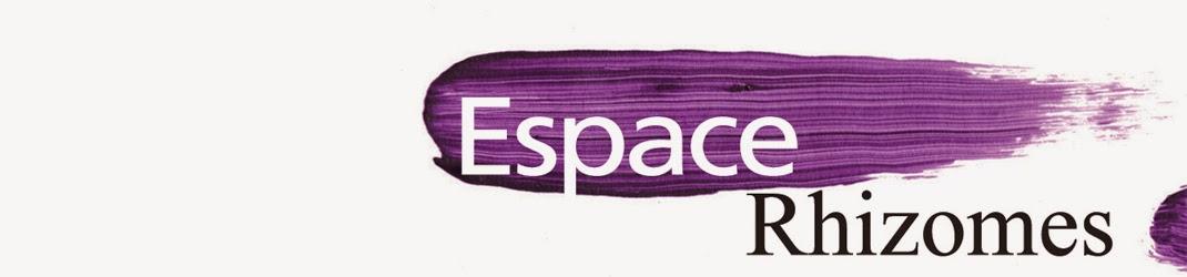 Galerie d'Art et Collectif d'Artistes Espace Rhizomes
