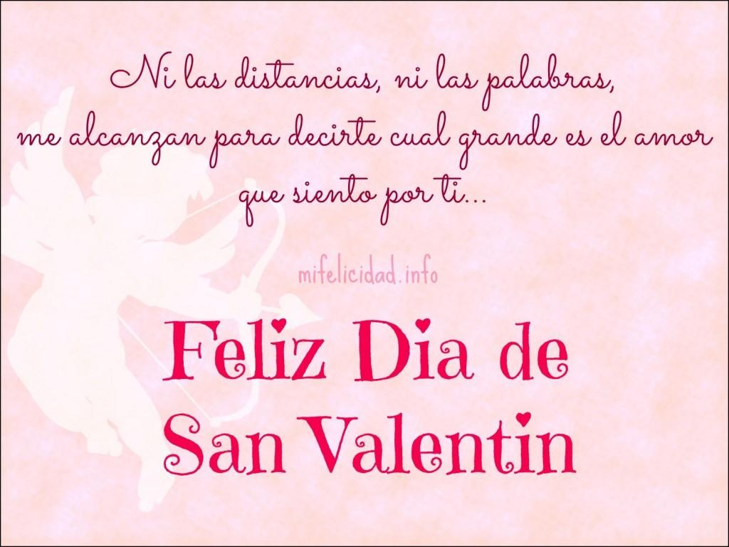 Ni la distancia ni las palabras me alcanzaran para decirte cual grande es el amor que siento por ti feliz da de san valentin