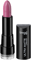Preview: Die neue dm-Marke trend IT UP - Ultra Matte Lipstick 030 - www.annitschkasblog.de