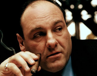 Tony Soprano is the best gangster character since Al Pacino in Scarface