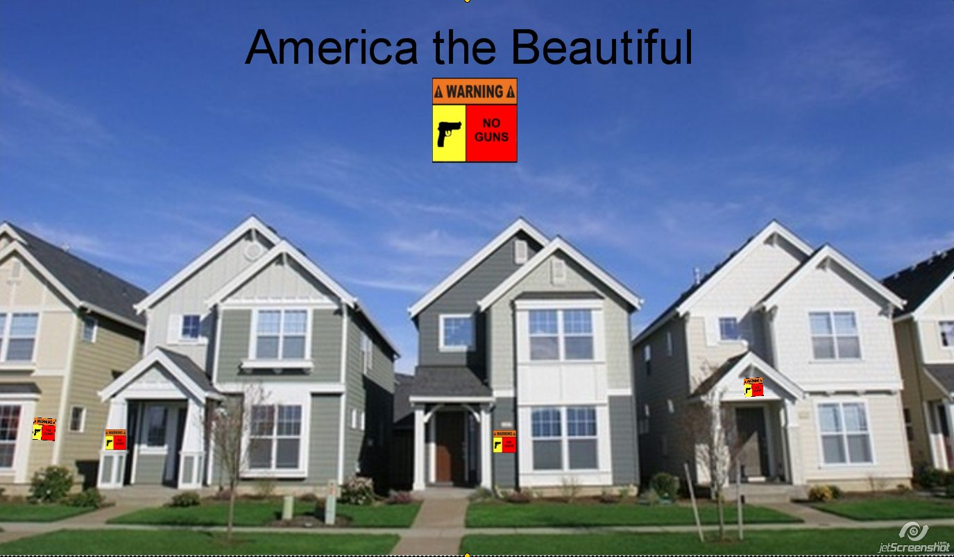 http://1.bp.blogspot.com/-B7ovIUaZVbU/TgAubfr2daI/AAAAAAAADoo/qfUpriVX0_E/s1600/Guns+Houses+No+Guns+Sign.jpg