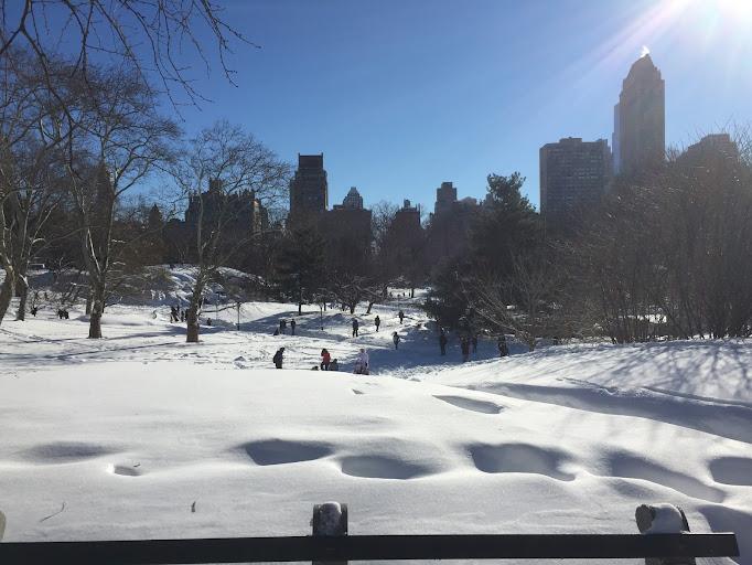 Jonas Blizzard, Central Park, NYC