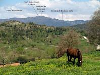 Vistes de la Serra de Bellmunt des del Camí Ral