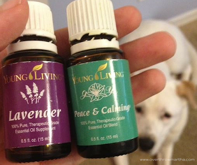 Diffusing Essential Oils and Pets: Are They Safe?