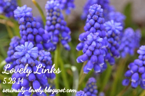Lovely Links 5.23.14