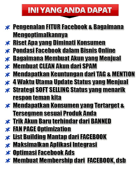 diskon fb domination