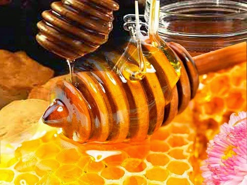 Cara membedakan madu asli