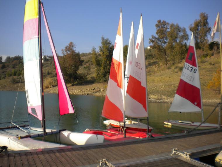 Flotilla...
