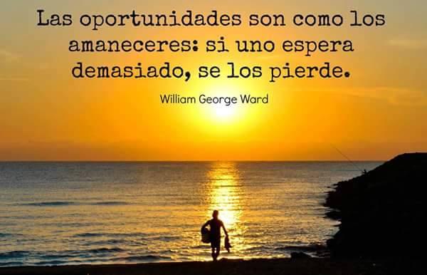 * oportunidades