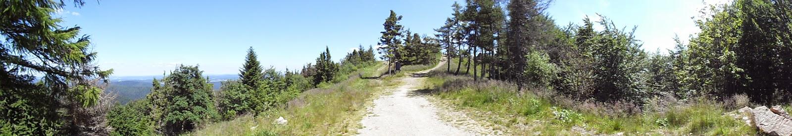 szlak Jaworzynie Krynickiej