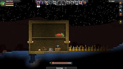 Дом в Starbound