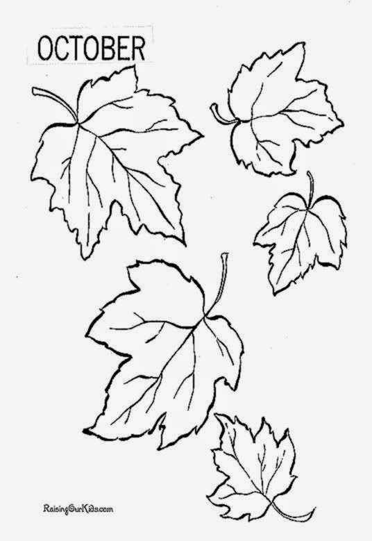 coloring pages of fall leaves - leaf coloring pages free printable